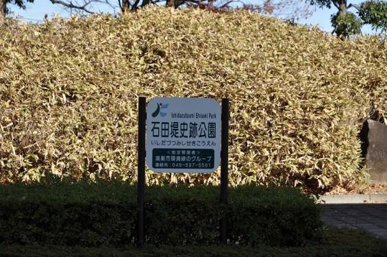 石田堤 DSC_0049