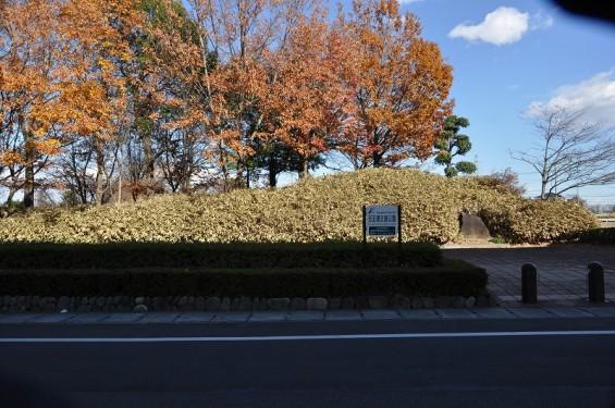 石田堤 DSC_0050