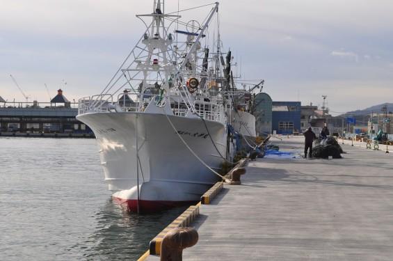 気仙沼 港 漁船 DSC_0336