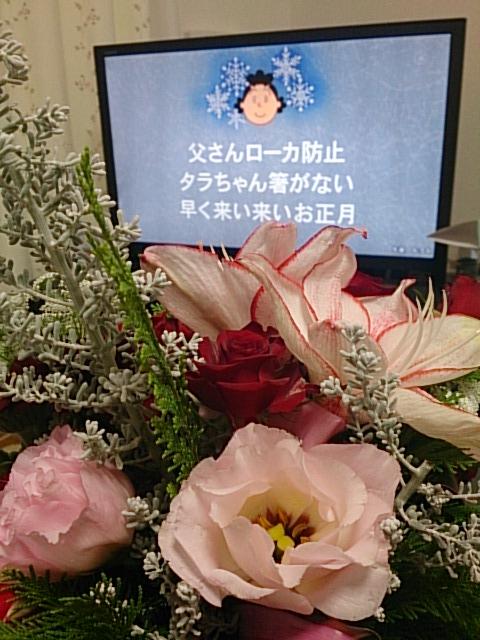 クリスマスの花 サザエさん DSC_1485