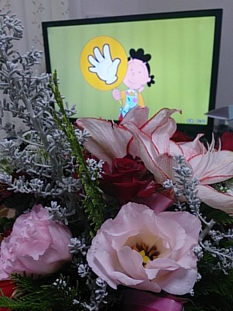 クリスマスの花 サザエさん DSC_1486