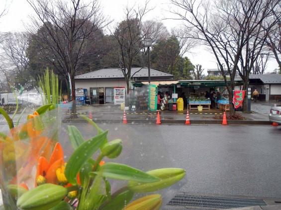 20140320 お彼岸のお墓参りは雨 さいたま市営霊園思い出の里 DSCN3908