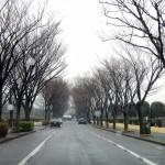20140320 お彼岸のお墓参りは雨 さいたま市営霊園思い出の里 DSCN3919