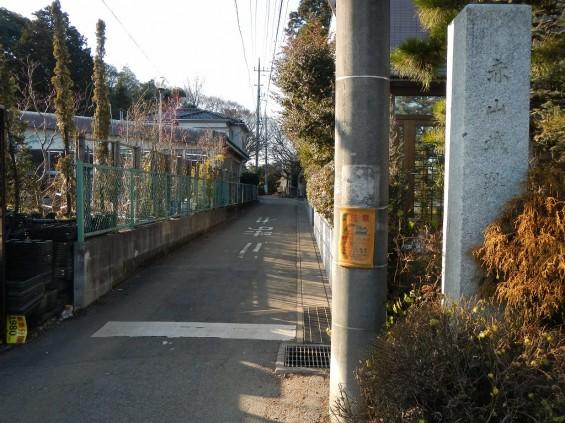 埼玉県川口市 赤山城(赤山陣屋)DSCN3634