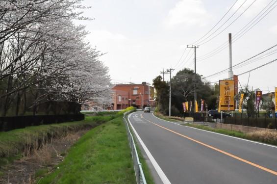 埼玉県桶川市 桶川霊園に行ってきましたDSC_0405