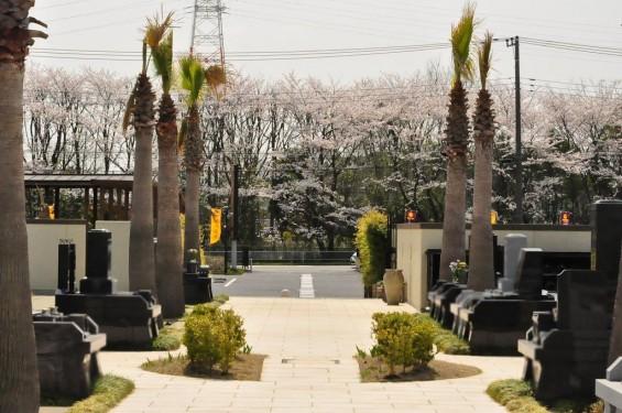 埼玉県桶川市 桶川霊園に行ってきましたDSC_0372