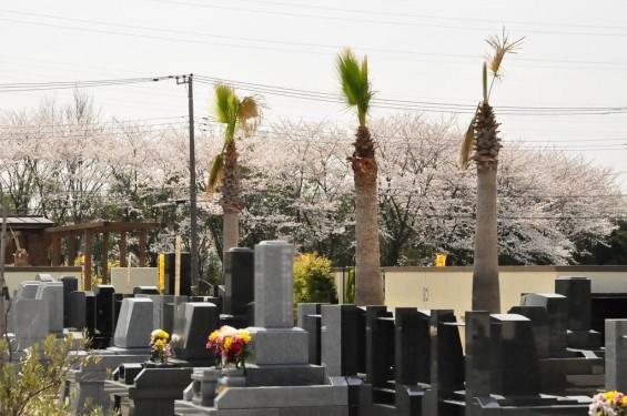 埼玉県桶川市 桶川霊園に行ってきましたDSC_0376