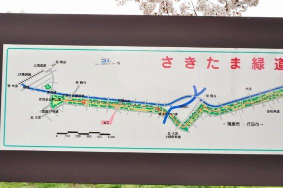 20140404 埼玉県さきたま緑道の桜DSC_0328