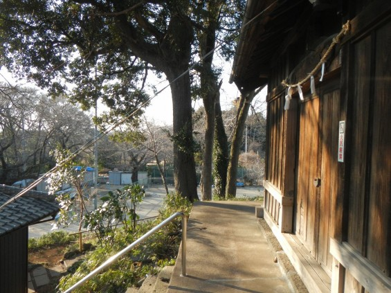 埼玉県川口市 赤山城(赤山陣屋)DSCN3632
