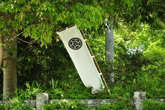 長宗我部信親(元親の長子)のお墓参りに雪蹊寺にDSC_0509