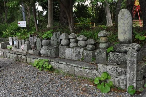 長宗我部信親(元親の長子)のお墓参りに雪蹊寺にDSC_0478