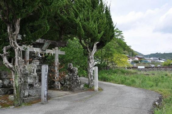 20140430 やなせたかし 墓 朴の木公園20140430 やなせたかし 墓 朴の木公園 厳島神社DSC_0172