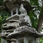 20140430 やなせたかし 墓 朴の木公園20140430 やなせたかし 墓 朴の木公園 厳島神社DSC_0170