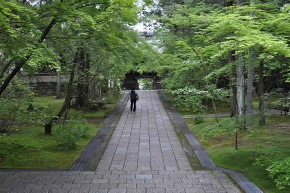 五台山 竹林寺DSC_0240
