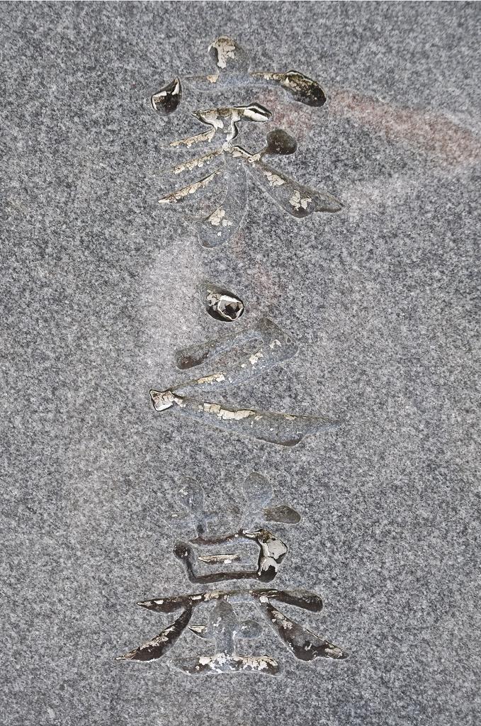 墓石の文字に入れた色、落ちていませんか?DSC_0031