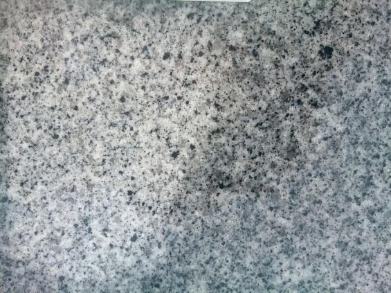 雨のあとの墓石 濡れると色が変わる1401674260726