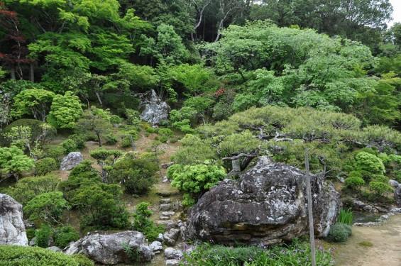 五台山 竹林寺名勝庭園 夢窓疎石国師の作庭 DSC_0241