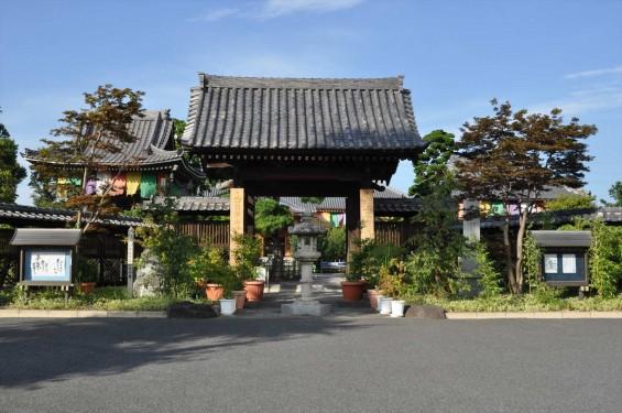 埼玉県上尾市 遍照院DSC_0051 山門