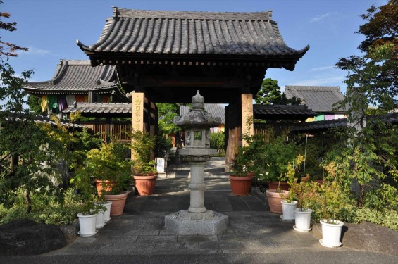 埼玉県上尾市 遍照院DSC_0053 山門