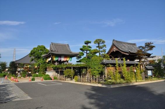 埼玉県上尾市 遍照院DSC_0049
