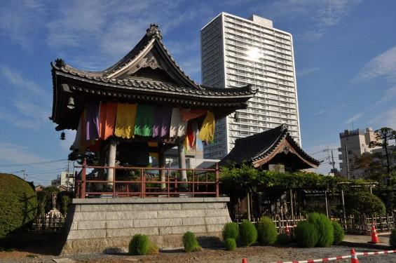 埼玉県上尾市 遍照院DSC_0093鐘楼と山門とシティタワー上尾駅前 タワマン