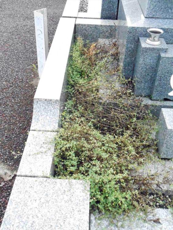 お墓に雑草は生えていませんか?防草シートと、新しい玉砂利で気持ち良いお墓参りをDSCN0837
