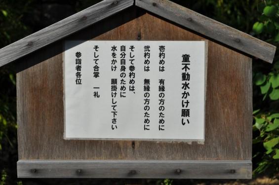埼玉県上尾市 遍照院DSC_0065身代わり拭い不動 童不動水かけ願い