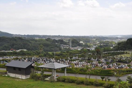 20140905 神奈川県横須賀市 南葉山霊園DSC_0042