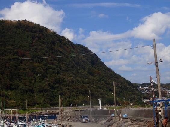 伊豆の城ヶ崎でダイビングをしてきましたIMG_4516[1]