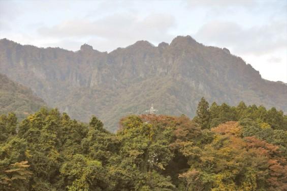 黄色のきれいな紅葉 妙義山DSC_0049