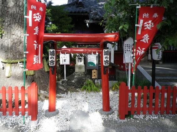 埼玉県鴻巣市 鴻神社(こうじんじゃ) 鴻の宮 IMGP0368