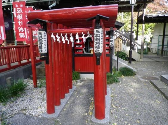 埼玉県鴻巣市 鴻神社(こうじんじゃ) 三狐稲荷神社 IMGP0374