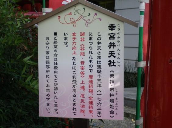 埼玉県鴻巣市 鴻神社(こうじんじゃ) 幸宮弁天社 IMGP0376