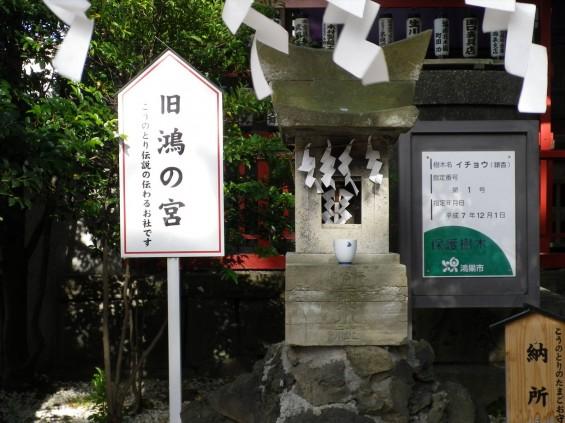 埼玉県鴻巣市 鴻神社(こうじんじゃ) 旧鴻の宮 IMGP0378