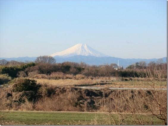 20150112 西上尾メモリアルガーデン 墓苑から臨む富士山2