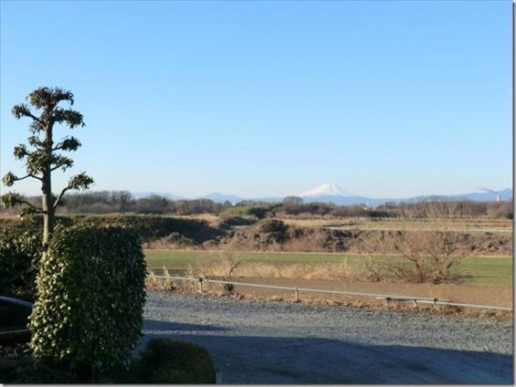 20150112 西上尾メモリアルガーデン 墓苑から臨む富士山1