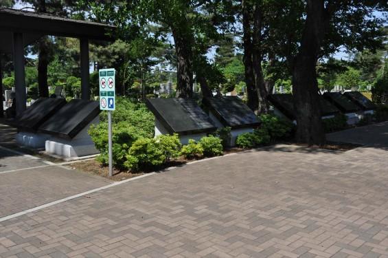 2015年5月 小平霊園の合葬式墓地DSC_0524