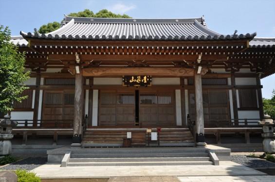 2015年6月24日 埼玉県伊奈町の寺院 法光寺DSC_1638
