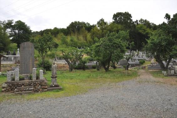 20150608 東松山市岩殿 阿弥陀堂の板石塔婆DSC_1466