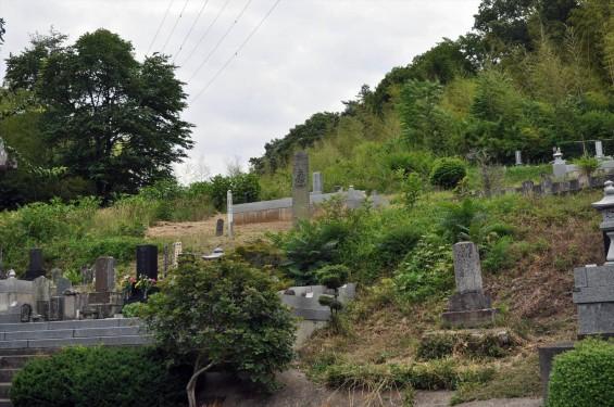 20150608 東松山市岩殿 阿弥陀堂の板石塔婆DSC_1450