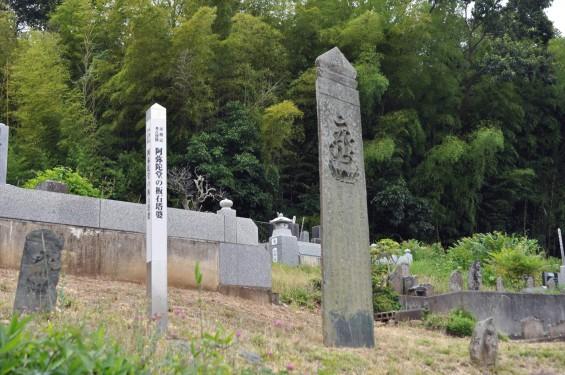 20150608 東松山市岩殿 阿弥陀堂の板石塔婆DSC_1451