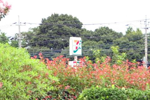 埼玉県蓮田市の星久院 セブンイレブン