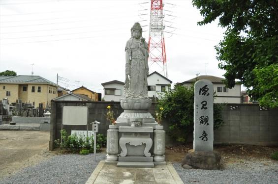 2015年 埼玉県白岡市 大徳寺DSC_3182