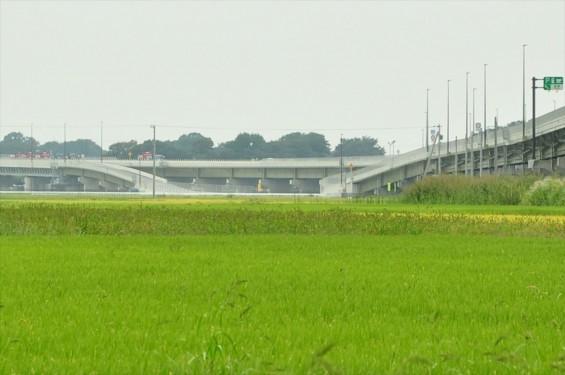 2015年10月 圏央道進捗状況 菖蒲paパーキングエリア 工事中の様子DSC_3840-