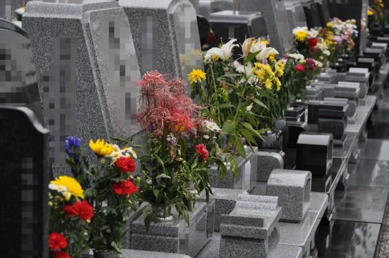 お墓参りの供花 仏花 彼岸 久喜聖地公苑DSC_3819