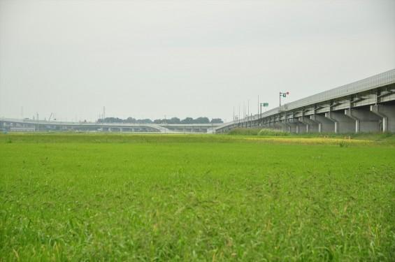 2015年10月 圏央道進捗状況 菖蒲paパーキングエリア 工事中の様子DSC_3840