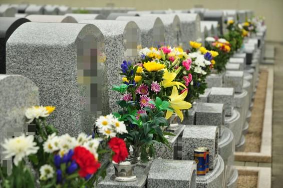 お墓参りの供花 仏花 彼岸 桶川霊園DSC_3878