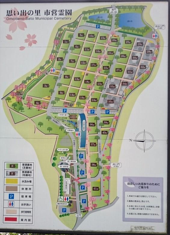 DSC_02222016年4月8日 さいたま市営思い出の里の桜と花 改葬