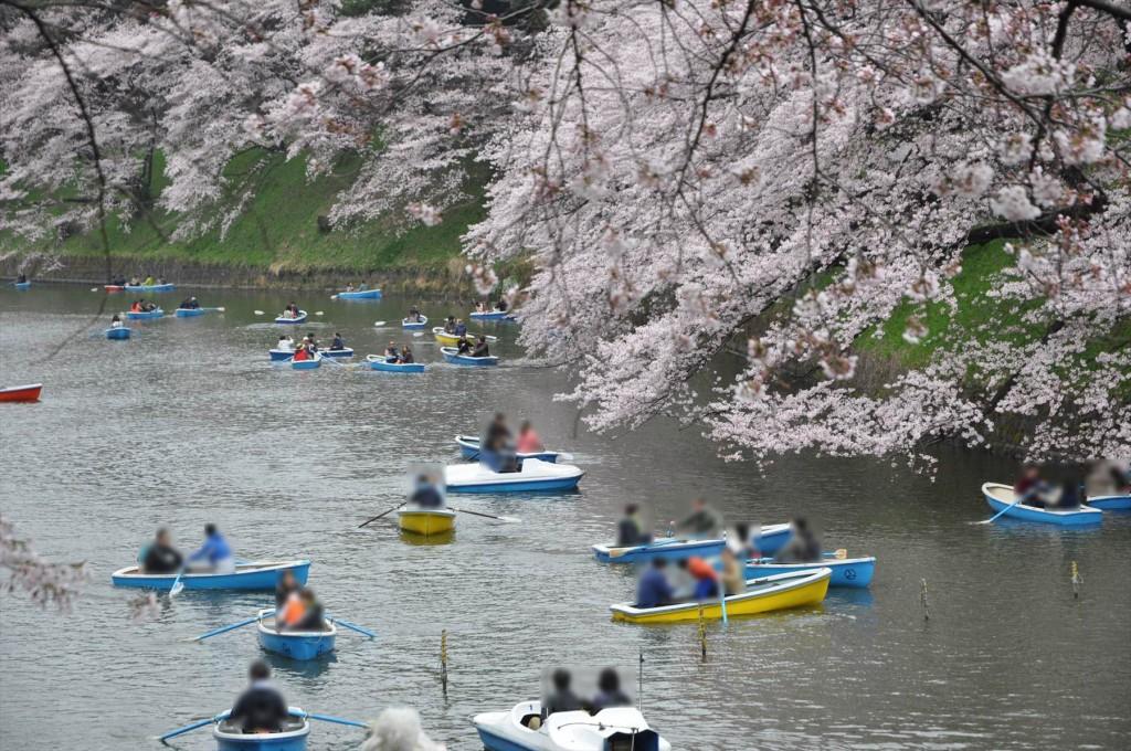 2016年4月2日 千鳥ヶ淵 満開の桜とボートDSC_5737