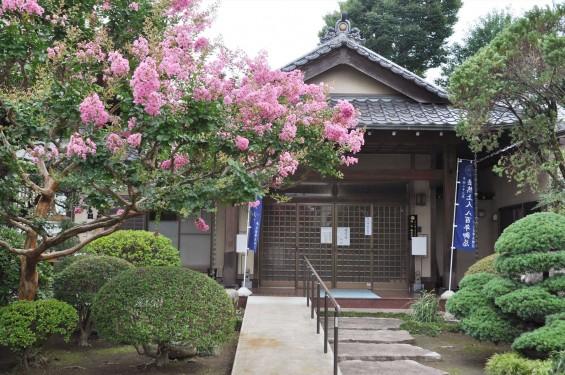 2016年7月20日 埼玉県上尾市の寺院、相頓寺のサルスベリが綺麗でしたDSC_8093